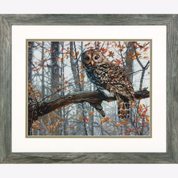 "70-35311 • Набор для вышивания крестом ""Мудрая сова"" • ""Wise Owl"" DIMENSIONS"