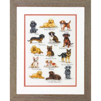"""70-35353 • Набор для вышивания крестом """"Собачий каталог"""" • """"Dog Sampler"""" DIMENSIONS"""
