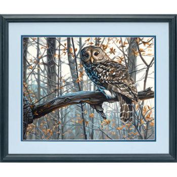 """73-91428 • Набор для рисования красками по номерам """"Мудрая сова"""" • """"Wise Owl"""" Dimensions Paint Works"""