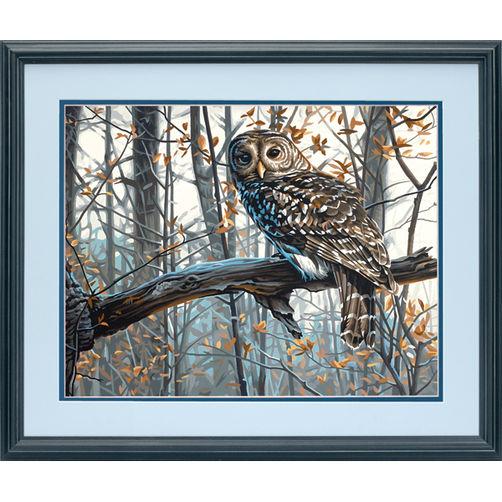 73-91428 Набор для рисования красками по номерам «Мудрая сова» • «Wise Owl» Dimensions Paint Works