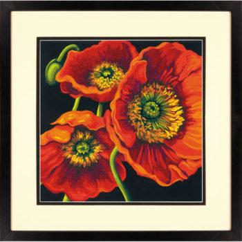"""73-91527 • Набор для рисования красками по номерам """"Трио красных маков"""" • """"Red Poppy Trio"""" Dimensions Paint Works"""