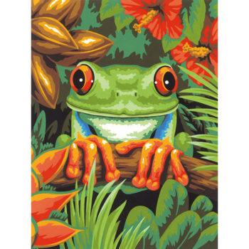"""73-91617 • Набор для рисования красками по номерам """"Древесная лягушка"""" • """"Tree Frog"""" Dimensions Paint Works"""